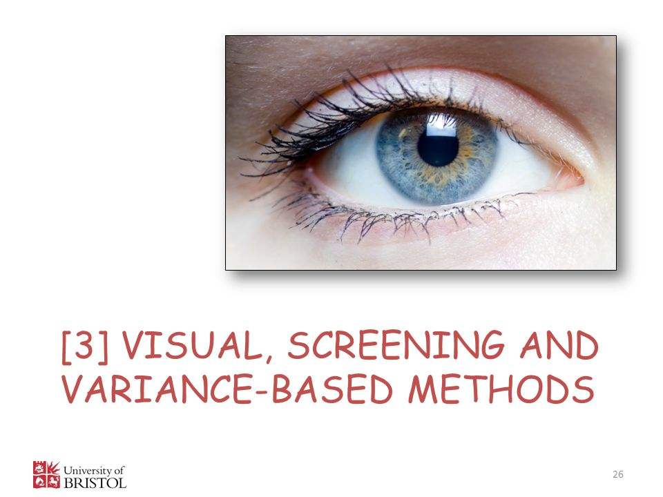 [3] Visual, screening and variance-based methods